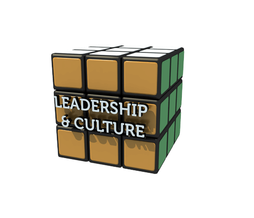 Leadership Culture Orange Small 500