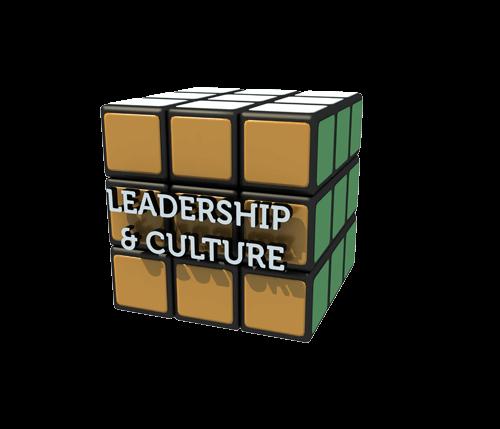 Leadership Culture Orange Small 500